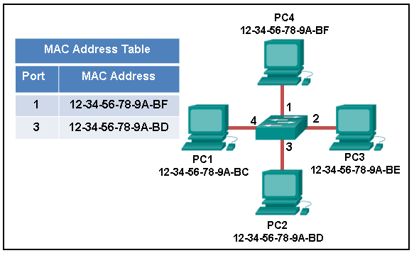 CCNA1 v6.0 Chapter 5 Exam 001
